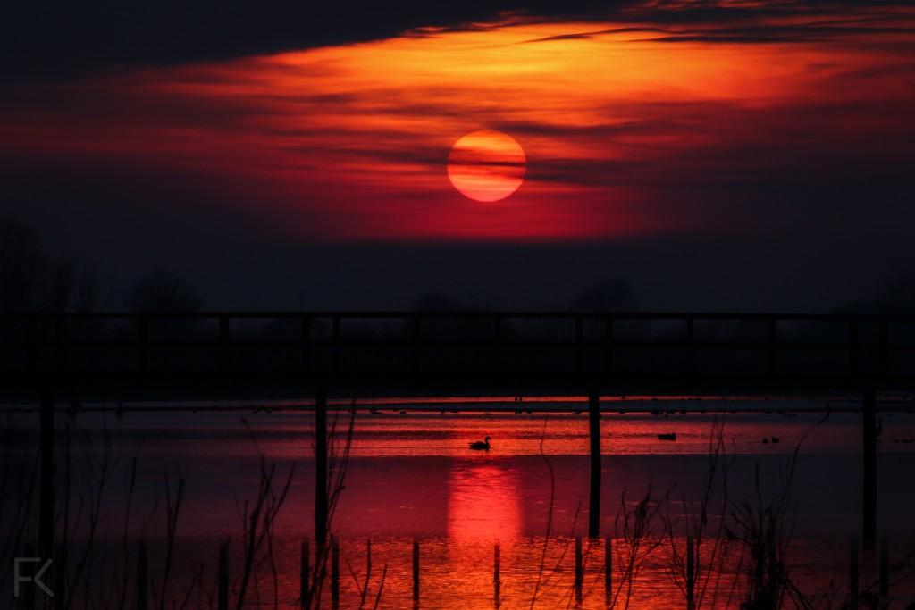 grote zon korendijk